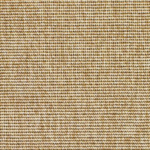 Polypropylene Rug Collection in Belize Dune with Narrow Cotton border in Granola