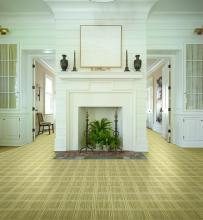 foyer with a hudson nylon rug in sandstone