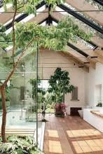 Room with lots of natural light and plants